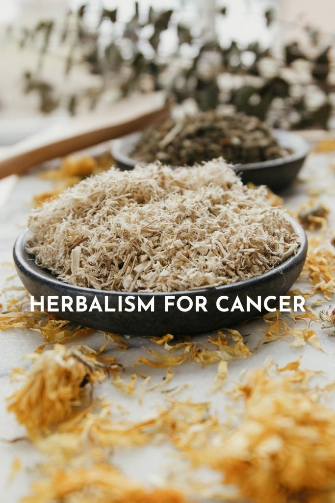 Holistic Cancer Care and Herbalism for Cancer